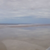 18. Looking north along western edge of Kati Thanda-Lake Eyre North 21 Jan 2016